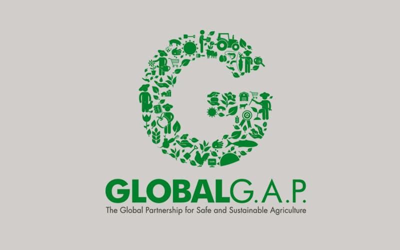 redondo-renueva-con-exito-la-certificacion-globalgap